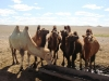 Brunnen in der Gobi