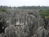 Stoneforest Shiling