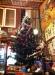 X-Mas Tree @ Julie Guesthouse