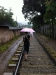 Üblicher Gehweg in Kandy