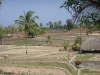 Nordkueste Baucau - Dili