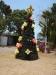 Australischer Weihnachtsbaum