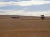 Fahrt nach Port Augusta