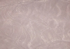 Nazca Linien Affe