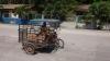 Pferd im Tricycle