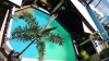 Pool Sabang Inn Beach Resort
